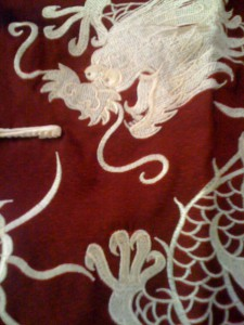 Dragon shirt close-up